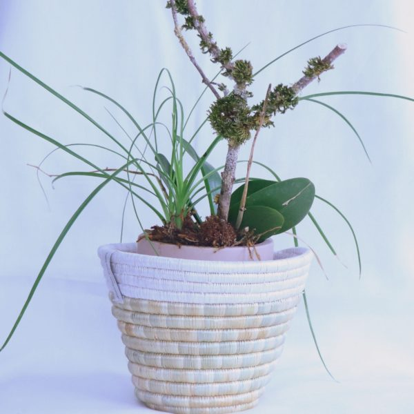 Handwoven plant basket in straw from Tanzania
